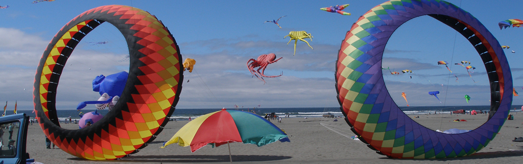 Home Of The Washington State International Kite Festival August 19